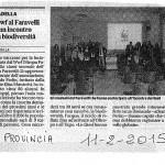 ARTICOLO13