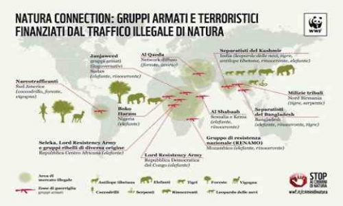 gruppi-terroristici