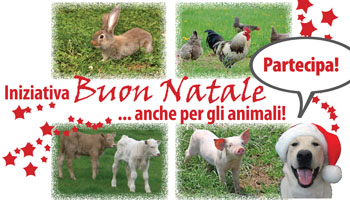 header_newsletter_natale_2008_350x200